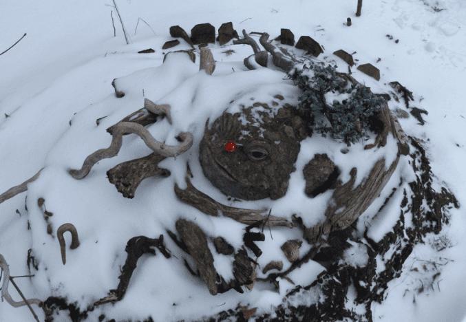 2016.12.15.pf.Rudolf.der.rot.nazd.frag.png