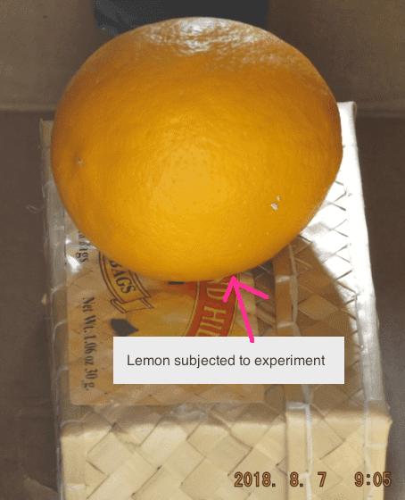 2018.08.07.lemon.in.spectrometry.device.png