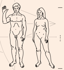 220px-Pioneer_plaque_humans.svg.png