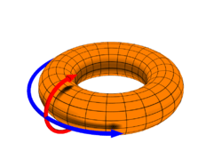 250px-Toroidal_coord.png