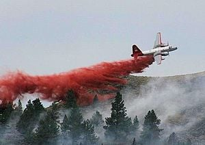 300px-BLM_Firefighting_at_Pine_Mountain%2C_Oregon_%2814186496134%29.jpg