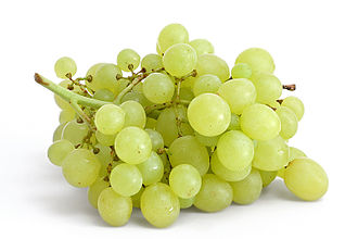 330px-Table_grapes_on_white.jpg