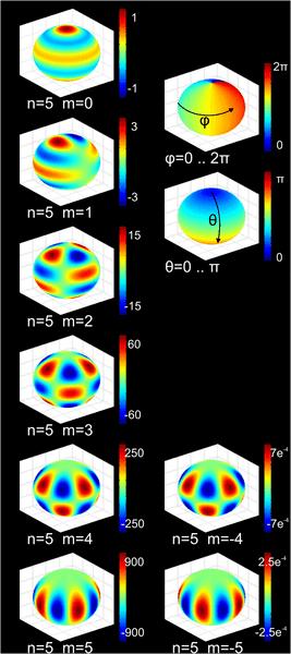 640px-Spherical_harmonics.png