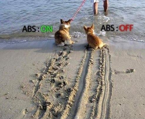 74262d1351041072-abs-explained-image.jpg