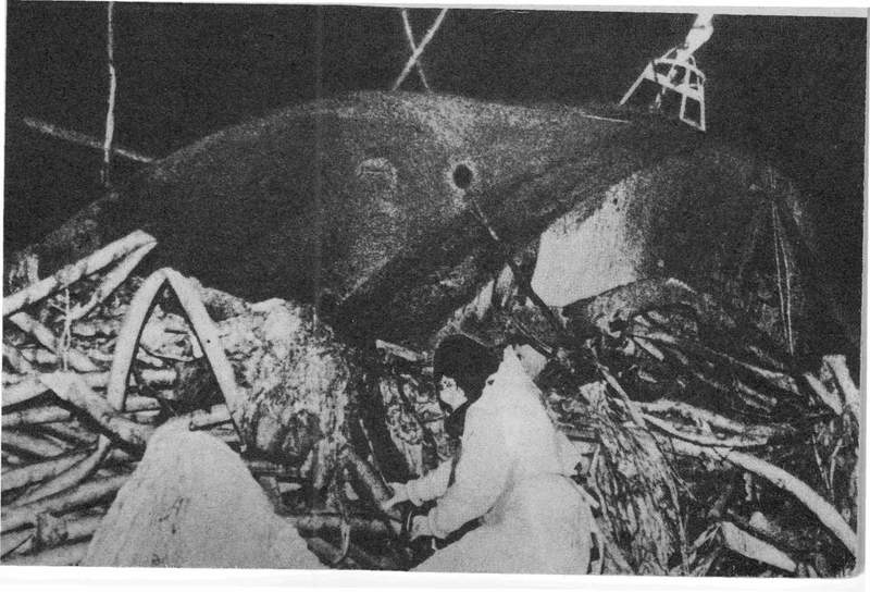 How did this worker approach this fuel mass at Chernobyl