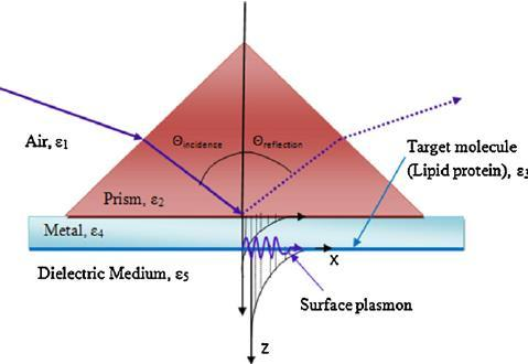 Some Questions About Surface Plasmon Polaritons Physics Forums