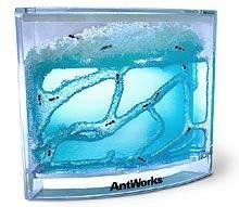 antworks.jpg