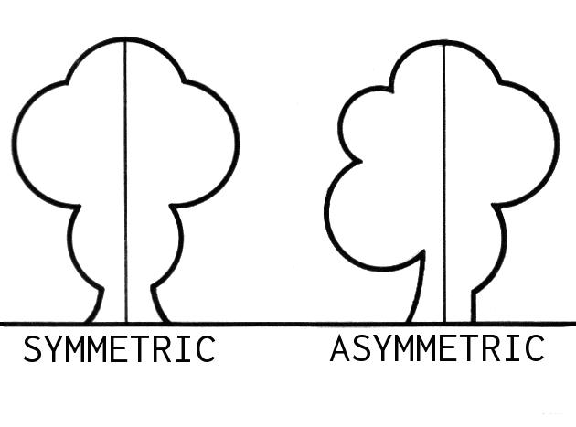Asymmetric_(PSF).png