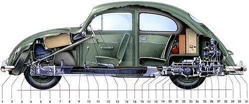 beetle_cutaway500.jpg