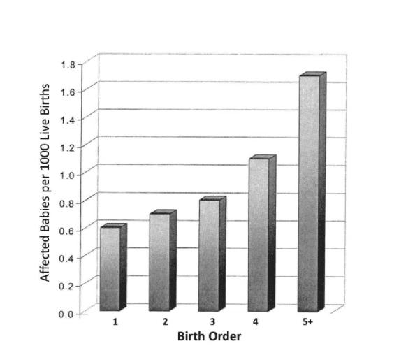 Birthorder.png
