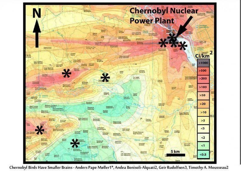 Chernobyl-map.jpg