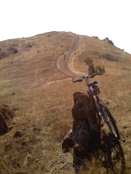 Coyote Hills Steep Dirt Hill MTB.jpg