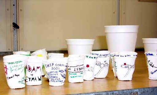 cups_545.jpg