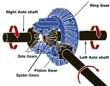 Why does the Spider gear (differential) start to rotate ... Differential Gear Diagram