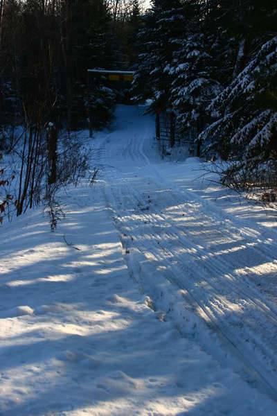 downhill_con.jpg
