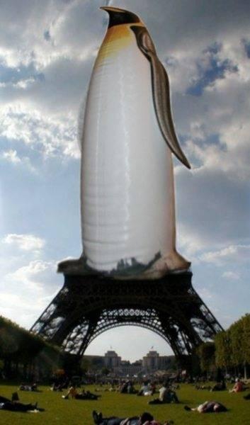 Eiffel_Penguin.jpg