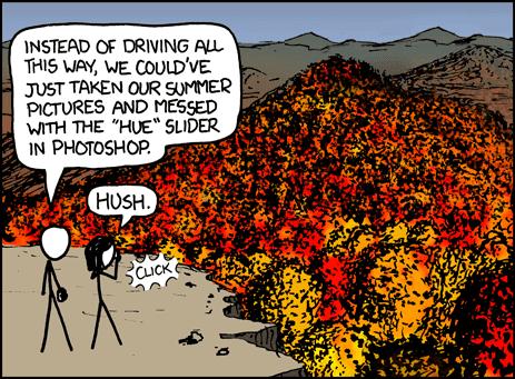 fall_foliage.png