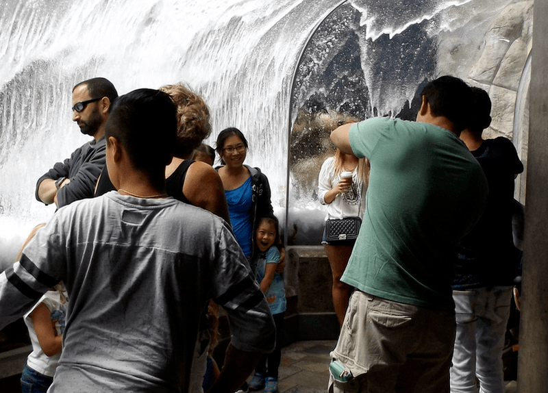falling-water-monterey-bay-aquarium-2016-06-20-png.105925.png