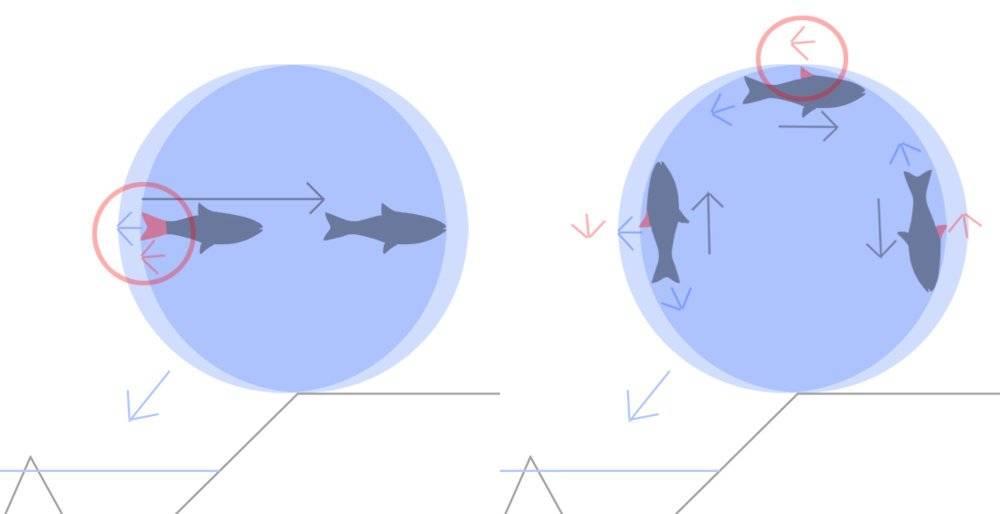 fish-escape5.jpg