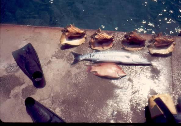 fishonpier.jpg