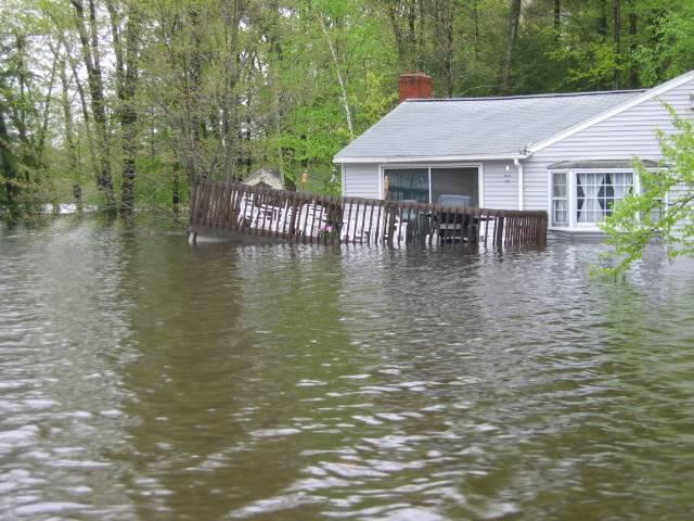 flood062.jpg
