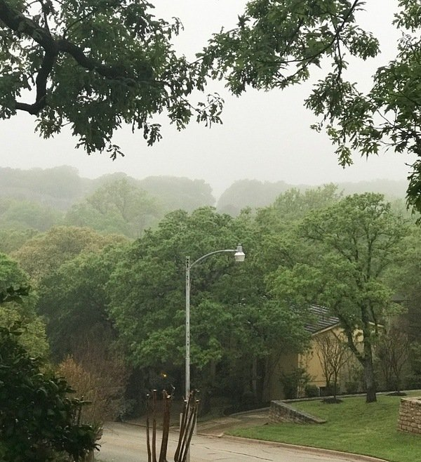 foggy-jpg.jpg