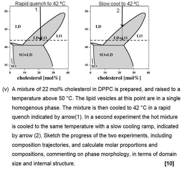 a more complicated question on lipid phase diagrams