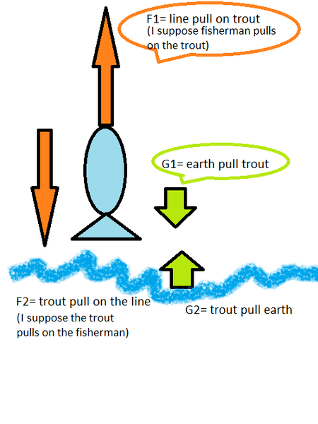 free body diagram.png