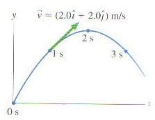 determine projectile motion velocity physics forums