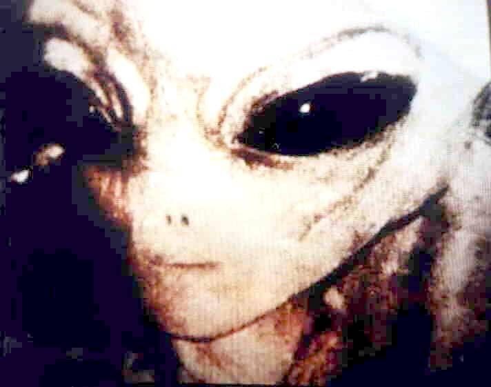 gray_alien_50yrs_of_denial_photo1.jpg
