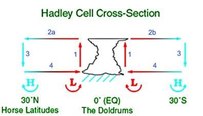 hadleycross-sec.jpg