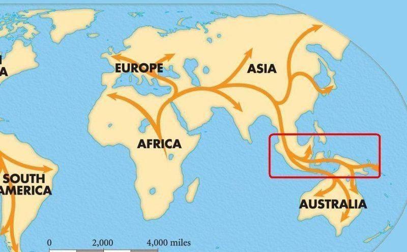Human Migration(2).JPG