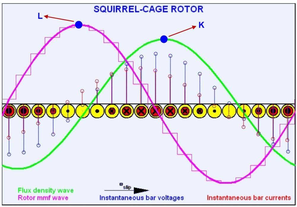 induction_squirrel.jpg