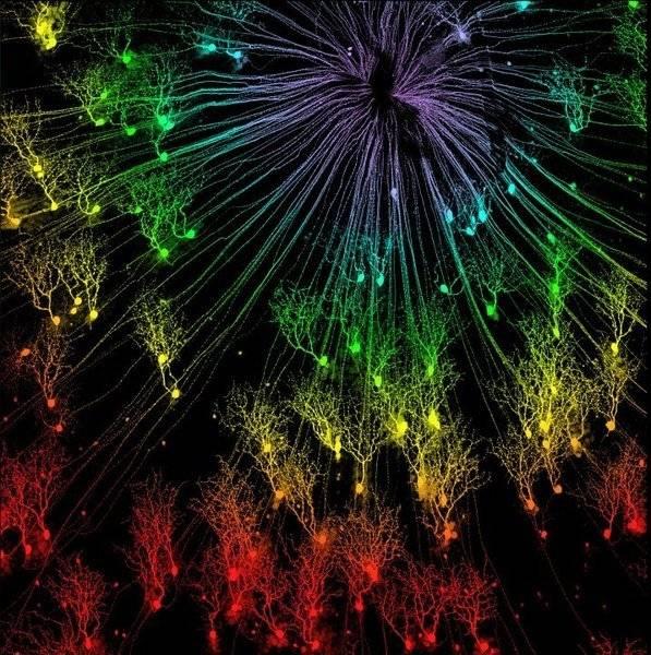 iow-fireworksretina.jpg
