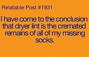 Lint - Socks.jpg