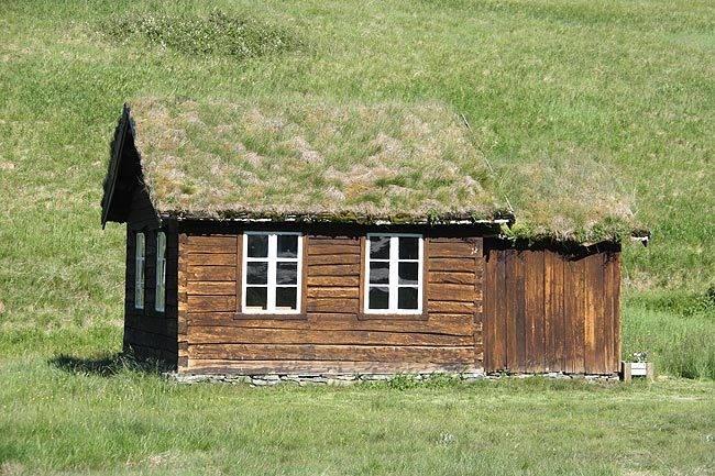 marcin_grass_of_home.jpg