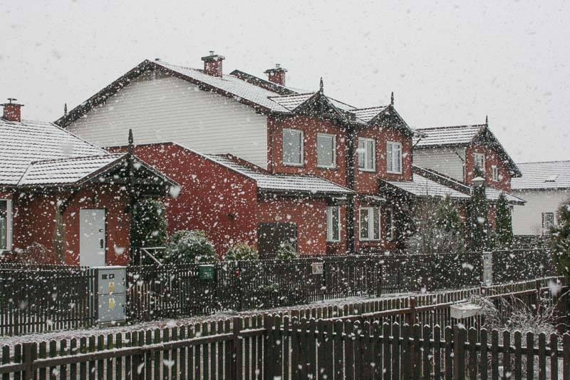 marcin_let_it_snow.jpg