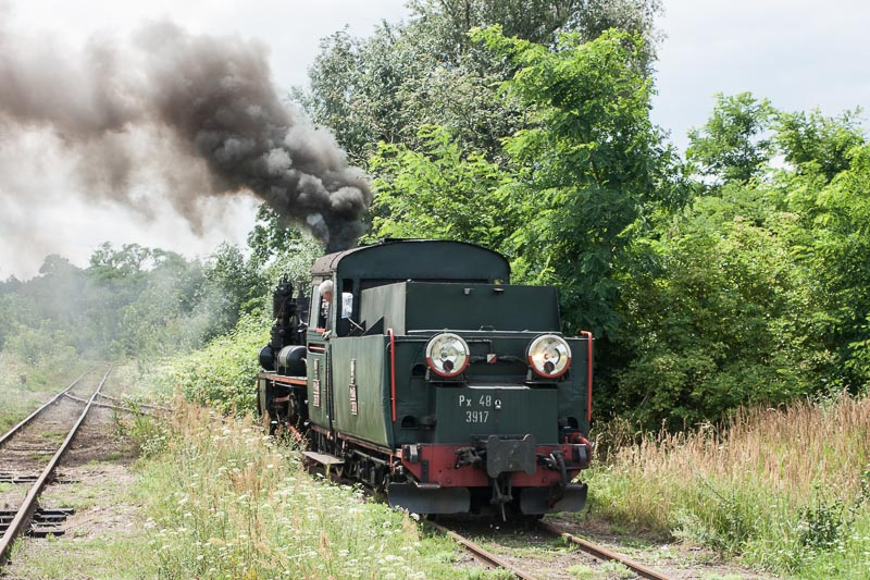 marcin_trainsportation.jpg