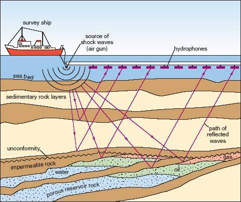 Marine-Seismic-Survey-Cartoon.jpg