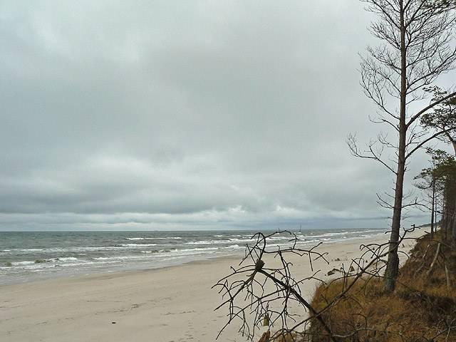 marzena_beach.jpg
