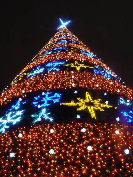 marzena_christmas_lights.jpg