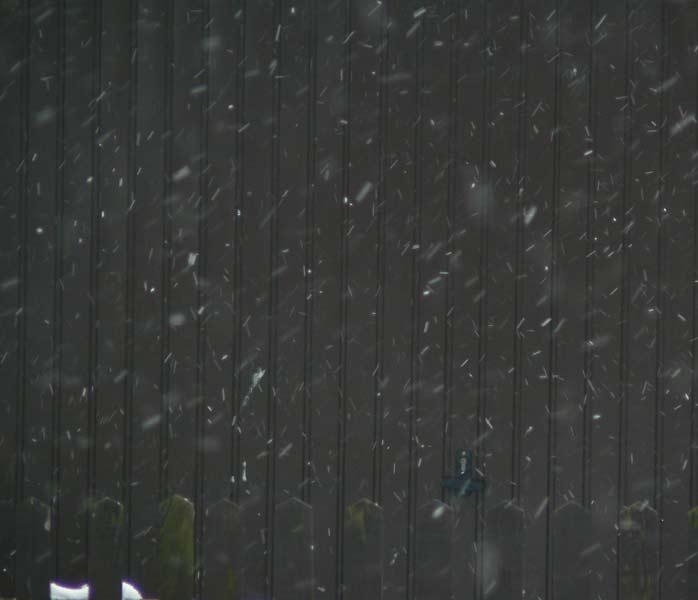 marzena_it's_snowing.jpg