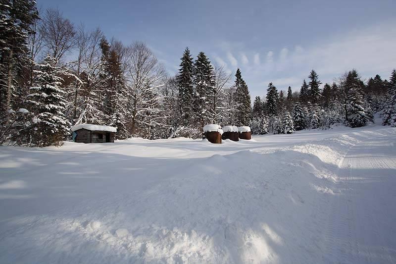 marzena_snow.jpg