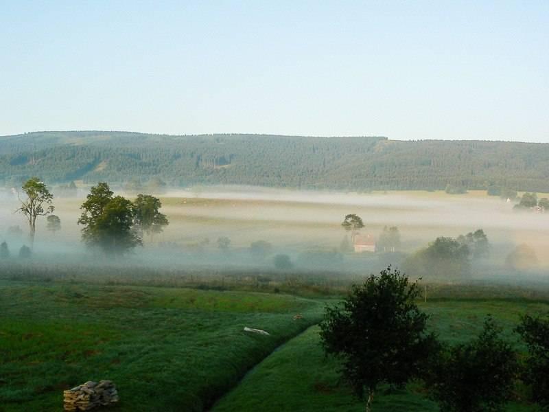 marzena_the_fog-jpg.jpg