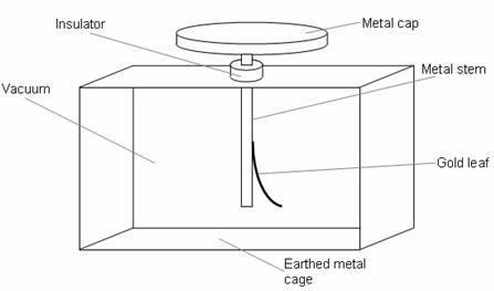 metal stem.jpg