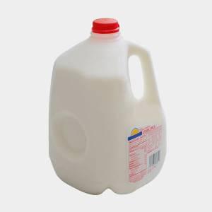 milkgallon-300x300.jpg