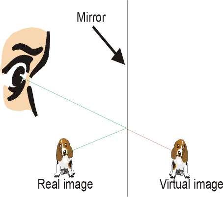 mirror%20optics.jpg
