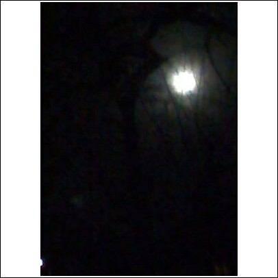 moonan7.jpg