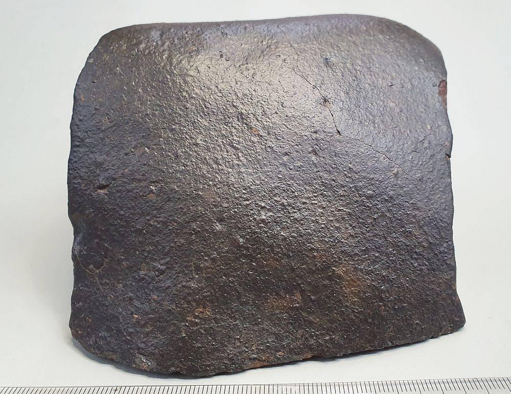 NWA 1.5kg f.jpg