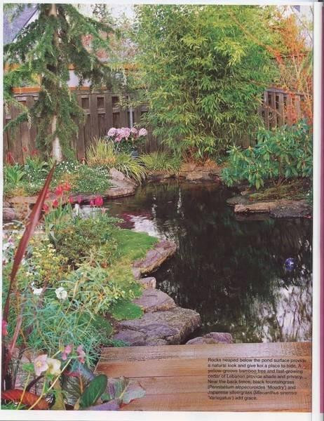 page52pu.jpg